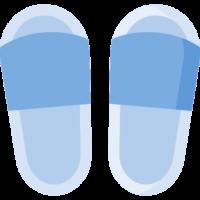 Anatomska obuća, ulošci