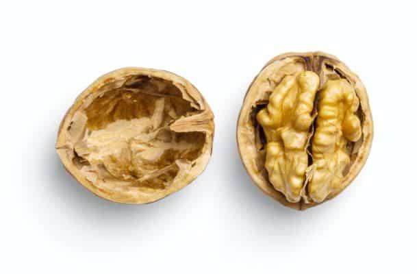 Dodaci Prehrani Nootropici Pamcenje Koncentracija